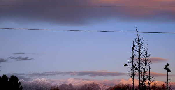 Wintertime Snows on Las Cruces, New Mexico's Organ Mountains